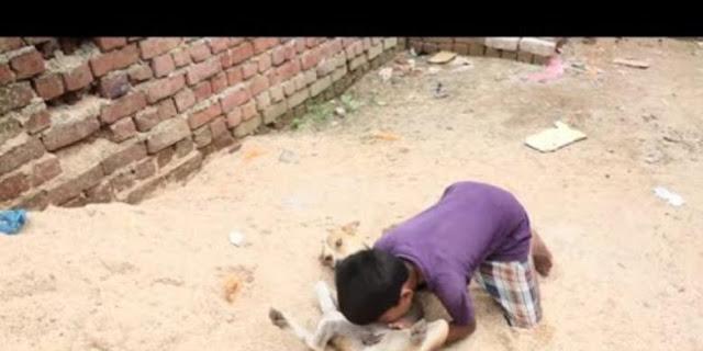 Bocah ini Doyan Susu Anjing Ketimbang Susu Sapi