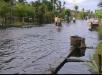 Bagansiapiapi Setiap tahun langanan Banjir , Pemda Rohil  harus punya kajian