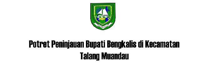 Potret Peninjauan Bupati Bengkalis di Kecamatan Talang Muandau